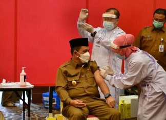 setahun pandemi indonesia