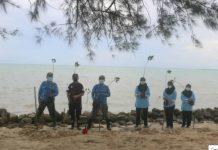 Lanud RSA tanam mangrove